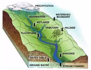 Watershed Diagram
