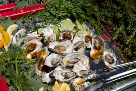 Hog Island oysters with or without sauce!