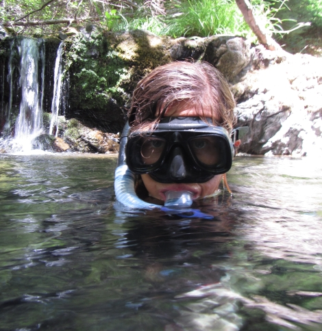 Snorkel Surveys in the Gualala